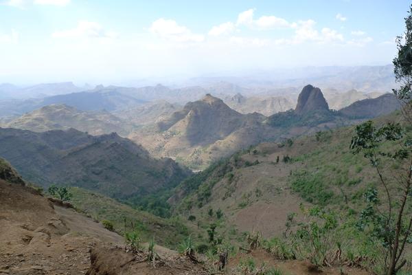 Les montagnes du Siemen, leur habitat naturel